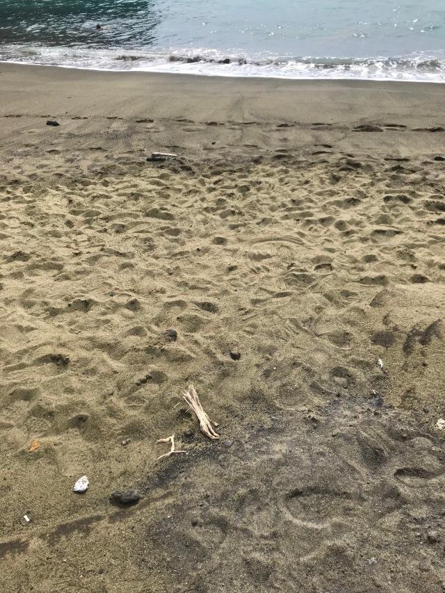 Green Sand and Beach
